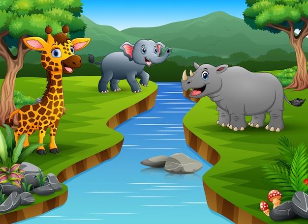 Fumetto animale felice che gode sulla riva del fiume Vettore Premium