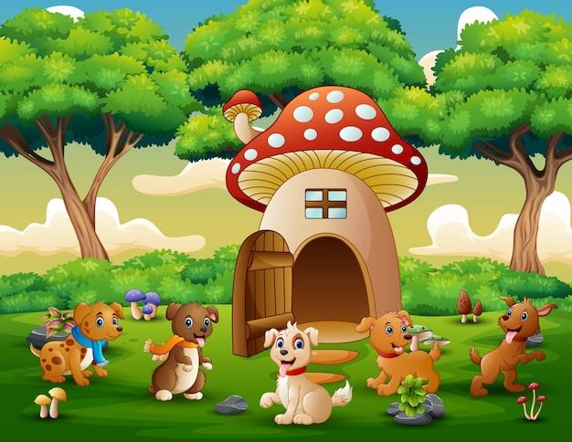 Fumetto molti cane vicino alla casa dei funghi rossa Vettore Premium