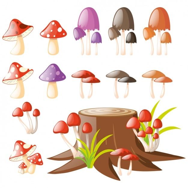 Funghi collezione colorata Vettore gratuito