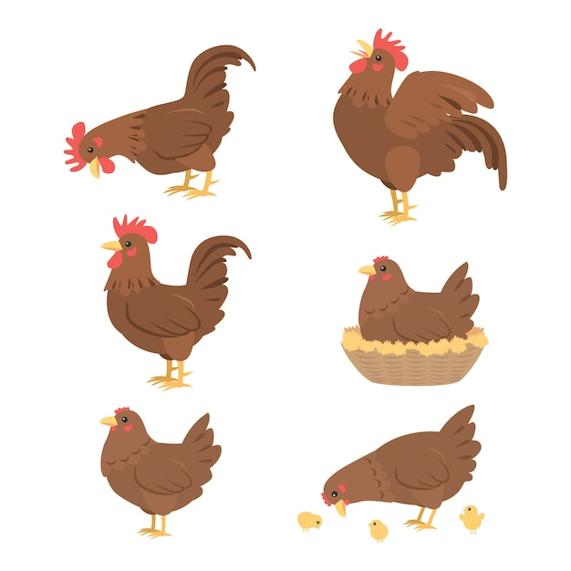 Gallo e gallina del fumetto, vettore Vettore Premium