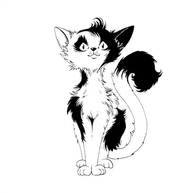 Gatto bianco e nero Vettore Premium