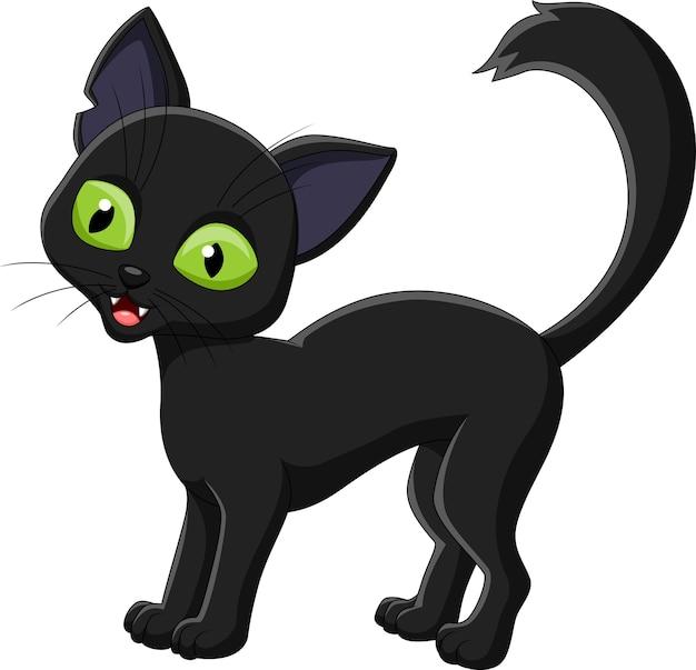 Animato nero micio