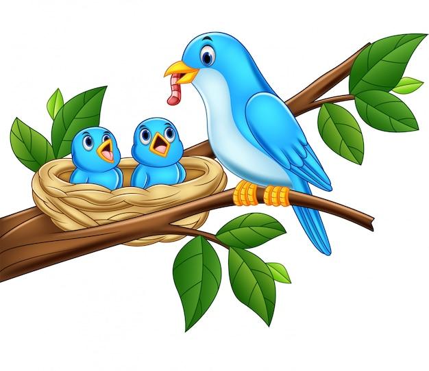 Generi i bambini d'alimentazione dell'uccello blu in un nido Vettore Premium