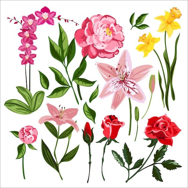 Ghirlanda di fiori natura Vettore Premium