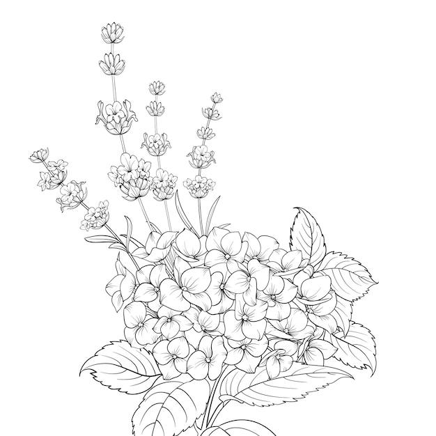 Ghirlanda floreale di lavanda e ortensia isolato su sfondo bianco. Vettore Premium