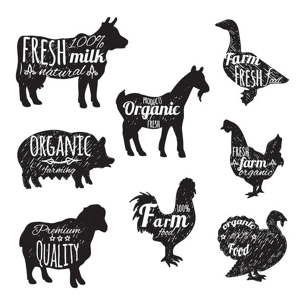 Gli animali da allevamento hanno fissato le icone decorative della lavagna Vettore gratuito