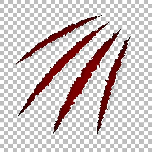 Graffi artigli di animali Vettore Premium