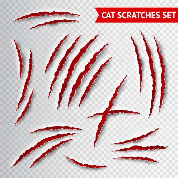 Graffi di gatto trasparenti Vettore gratuito