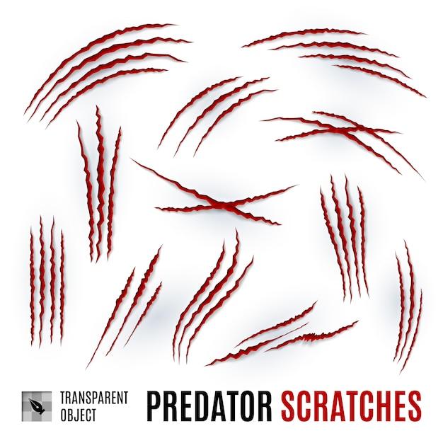 Graffi di predatori Vettore Premium