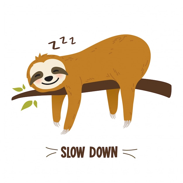 Grafica bradipo simpatico cartone animato Vettore Premium
