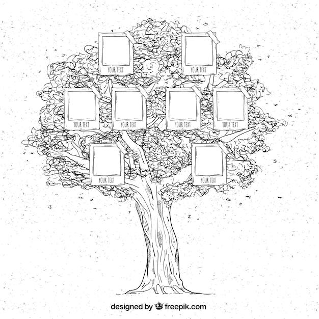 Grande albero di famiglia in stile disegnato a mano Vettore gratuito