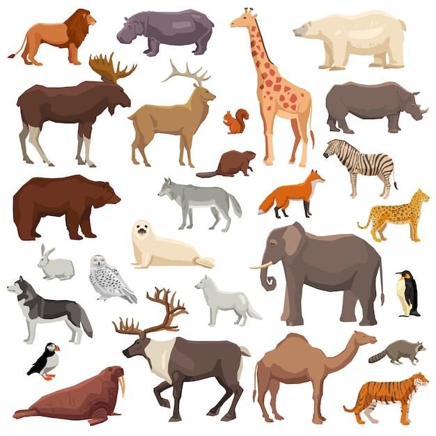 Grande set di animali Vettore gratuito