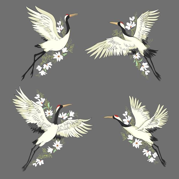 Gru. un uccello in volo. impostato Vettore Premium