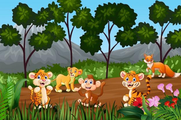 Gruppo di animali selvatici che si riuniscono ai margini della foresta Vettore Premium