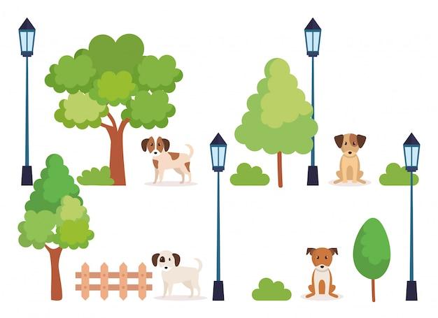 Gruppo di cani nel parco Vettore gratuito