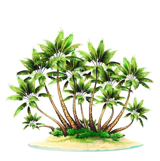 Gruppo di palme su un'isola Vettore Premium