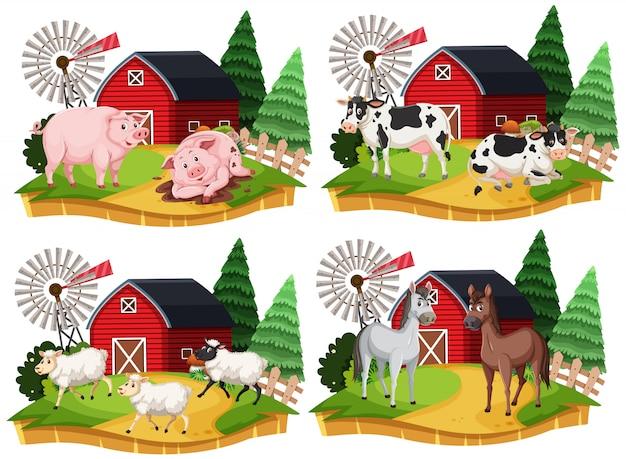 Gruppo di personaggio dei cartoni animati dell'animale da allevamento su fondo bianco Vettore Premium