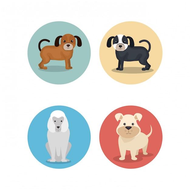 Gruppo di razze canine Vettore gratuito