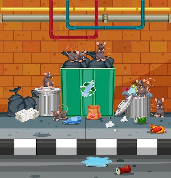 Gruppo di topo in strada sporca Vettore Premium