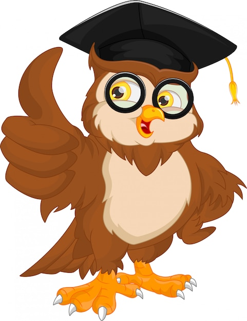 Gufo indossando il cappello di laurea Vettore Premium