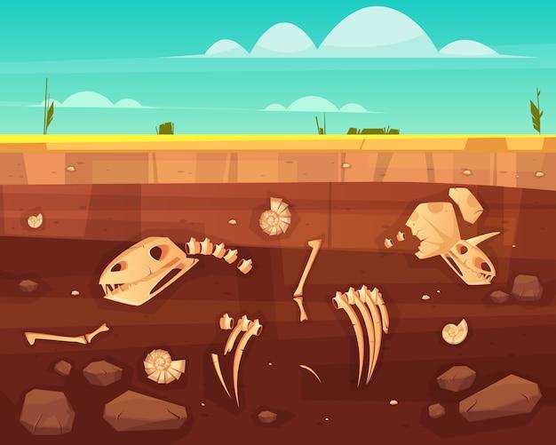 I crani dei dinosauri, ossa dello scheletro del rettile, coperture antiche dei molluschi del mare in strati profondi del suolo attraversano l'illustrazione di vettore del fumetto di sezione. storia della vita sul concetto di terra. sfondo di scienza paleontologica Vettore gratuito
