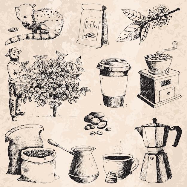 I fagioli di raccolto disegnati a mano dell'agricoltore di produzione del caffè sull'albero e sul disegno d'annata bevono il retro schizzo della raccolta del caffè Vettore Premium