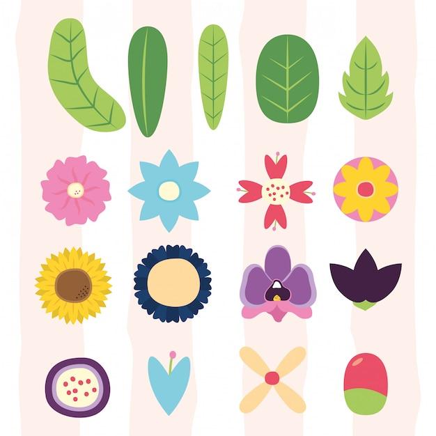 I fiori lascia la flora differents lascia, fiori, illustrazione della flora Vettore gratuito
