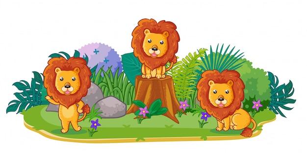 I leoni stanno giocando insieme in giardino Vettore Premium