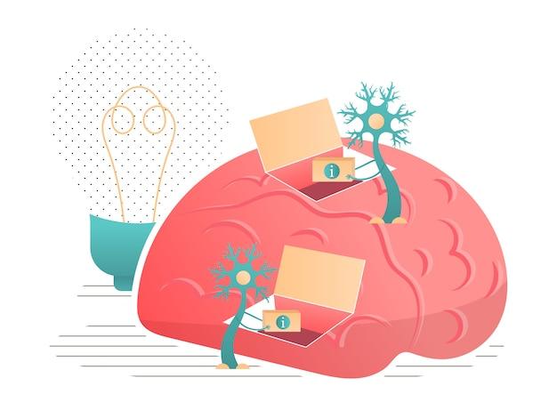 I neuroni trasmettono informazioni all'illustrazione del cervello. Vettore Premium