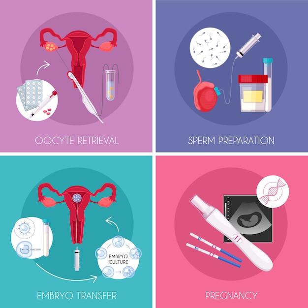 Icona di fecondazione in vitro piatta in vitro a quattro quadrati impostata con prelievo di ovociti preparazione di spermatozoi trasferimento di embrioni e descrizioni di gravidanza Vettore gratuito
