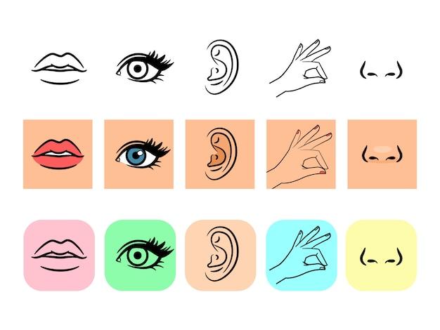 Icone di cinque sensi Vettore Premium