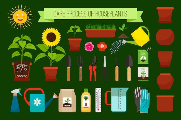 Icone e fiori di processo di cura delle piante da appartamento nella raccolta dei vasi Vettore Premium