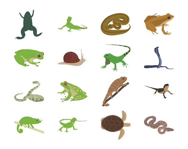 Icone piane di animali Vettore Premium