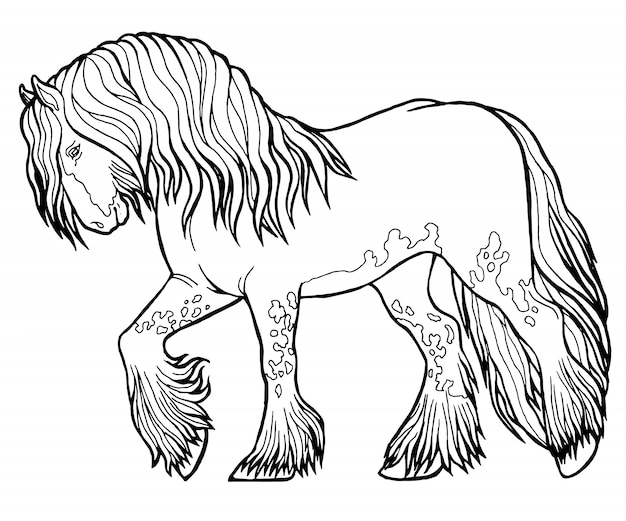 Il cavallo corre al trotto. libro da colorare. il cavallo corre al trotto. libro da colorare. tinker è un cavallo di razza. Vettore Premium