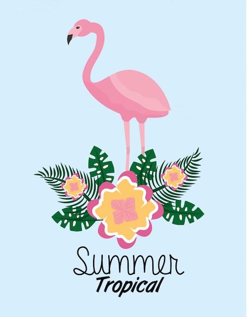 Il fiore sveglio di flamengo tropicale dell'estate lascia il fogliame esotico Vettore gratuito