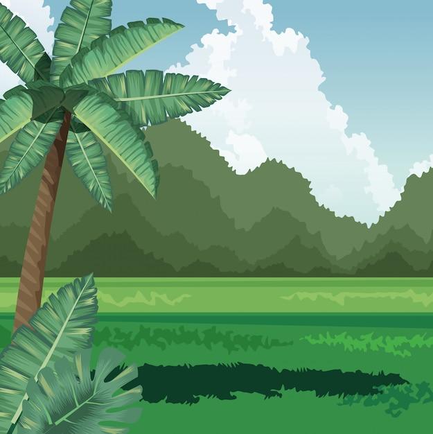 Il giacimento tropicale della noce di cocco della palma lascia le montagne Vettore Premium