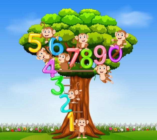 Il numero di raccolta da 0 a 9 con la scimmia sull'albero Vettore Premium