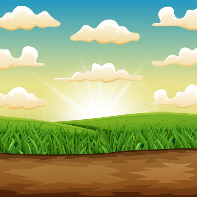 Il sole che sorge o tramonta su un bellissimo campo verde di erba Vettore Premium