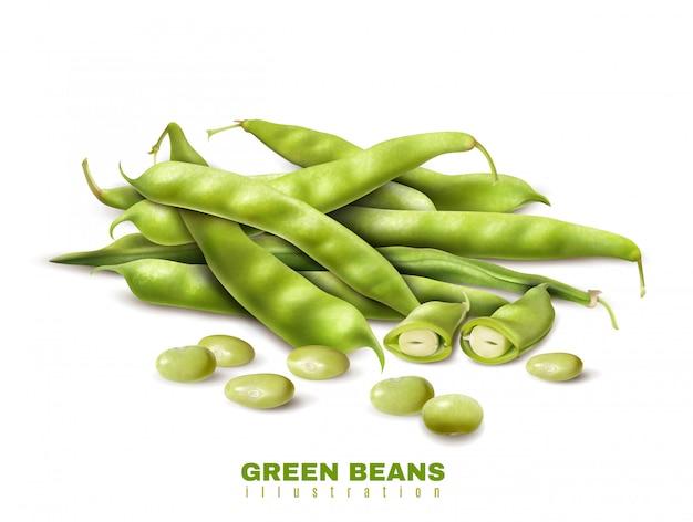 Il taglio fresco dei fagioli organici verdi e gli interi baccelli si chiudono sull'illustrazione sana di vettore della pubblicità dell'alimento di immagine realistica Vettore gratuito