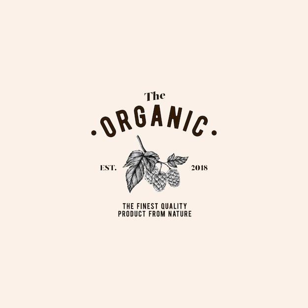 Il vettore di progettazione logo organico Vettore gratuito
