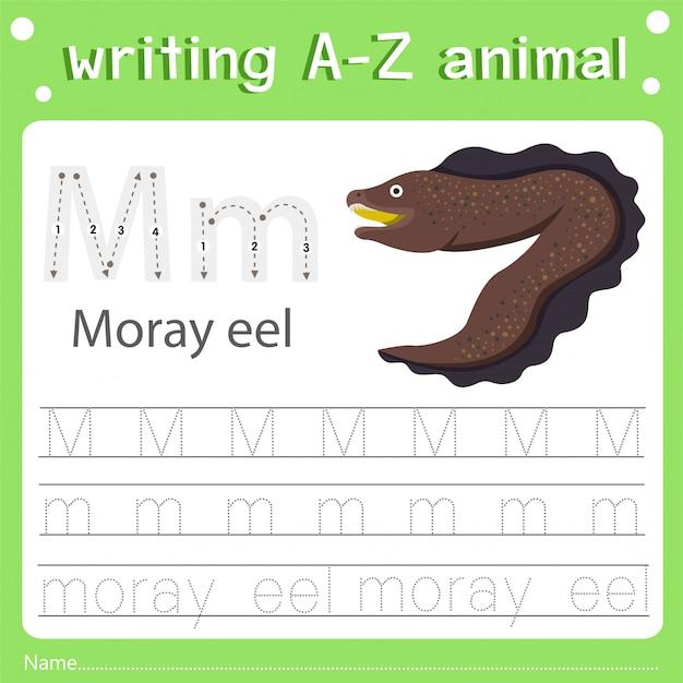Illustratore della scrittura di az animal m moray eel Vettore Premium