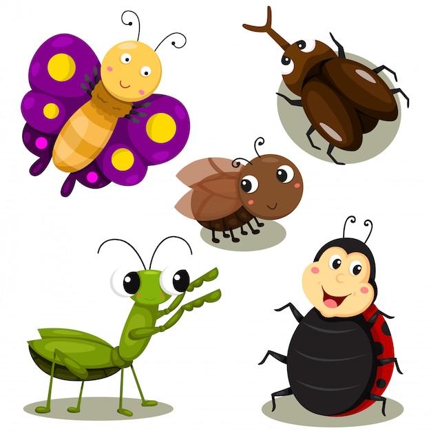 Illustratore di bug cartoon carino Vettore Premium