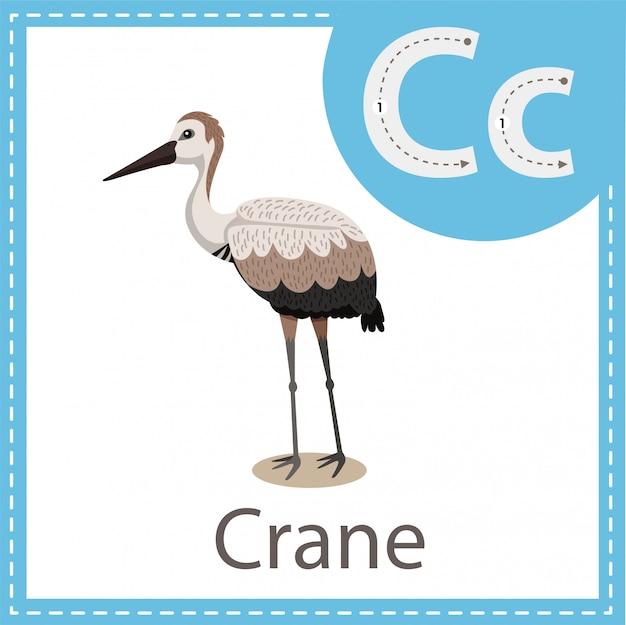 Illustratore di crane bird Vettore Premium