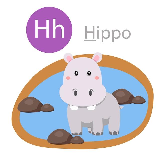 Illustratore di h per animale ippopotamo Vettore Premium
