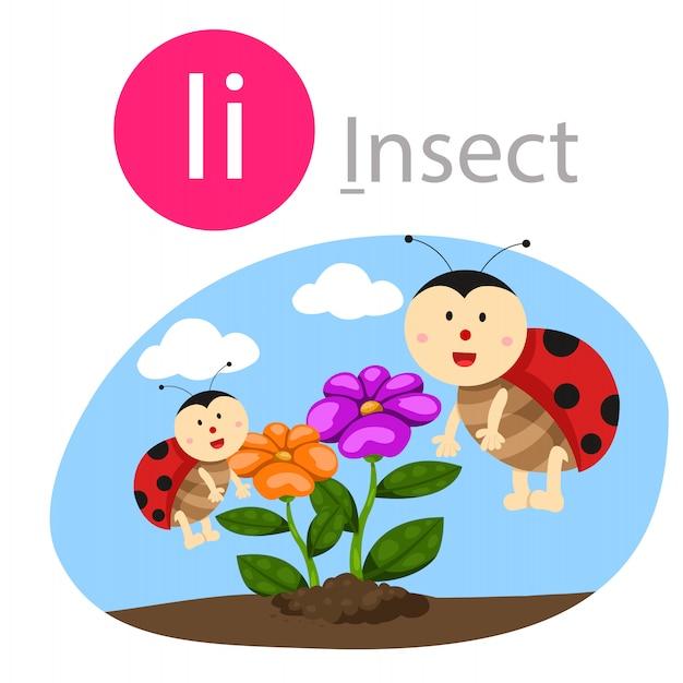 Illustratore di i per animale insetto Vettore Premium