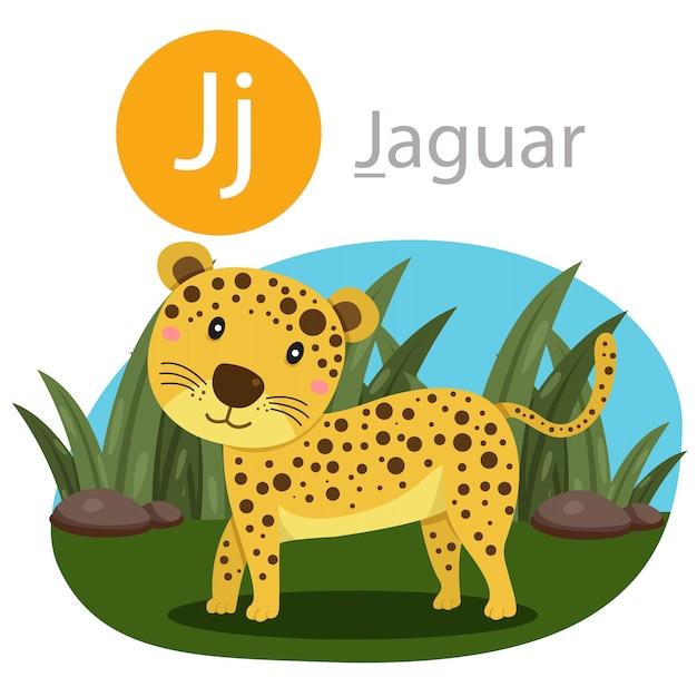 Illustratore di j per animale giaguaro Vettore Premium