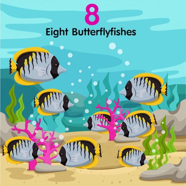 Illustratore di numeri con otto pesci farfalla Vettore Premium