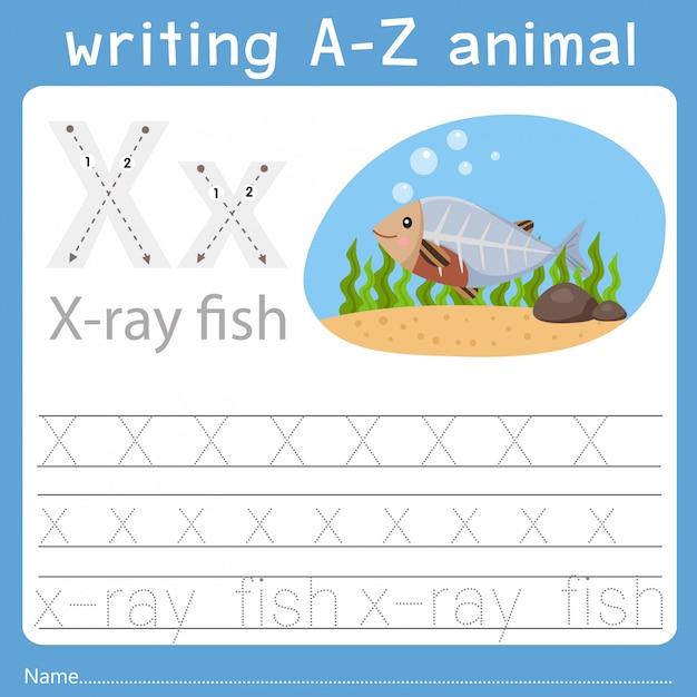 Illustratore di scrittura az animal x Vettore Premium