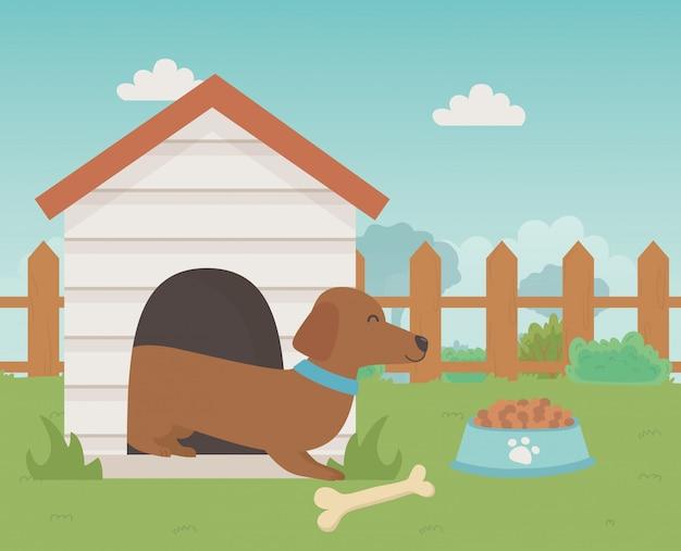 Illustratore di vettore di progettazione del fumetto del cane Vettore gratuito