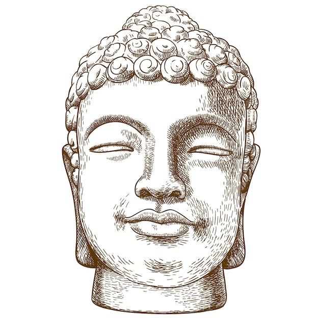 Illustrazione del disegno dell'incisione della testa di pietra di buddha Vettore Premium